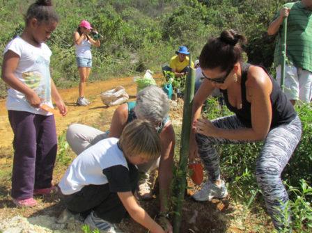 Pour l'environement des jeunes replantent des arbres pour remplacer ceux qui ont brulé